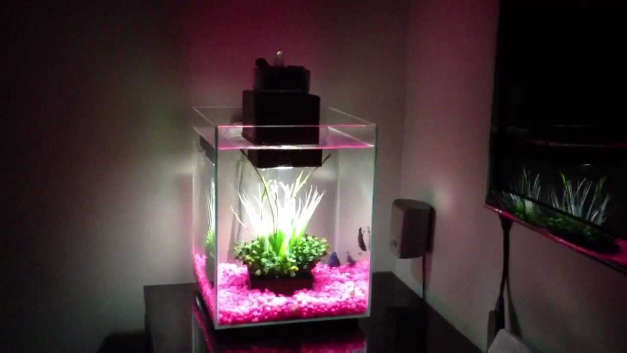 5 Gallon Aquarium Stand | Fluval Model 10506 | Fluval Chi