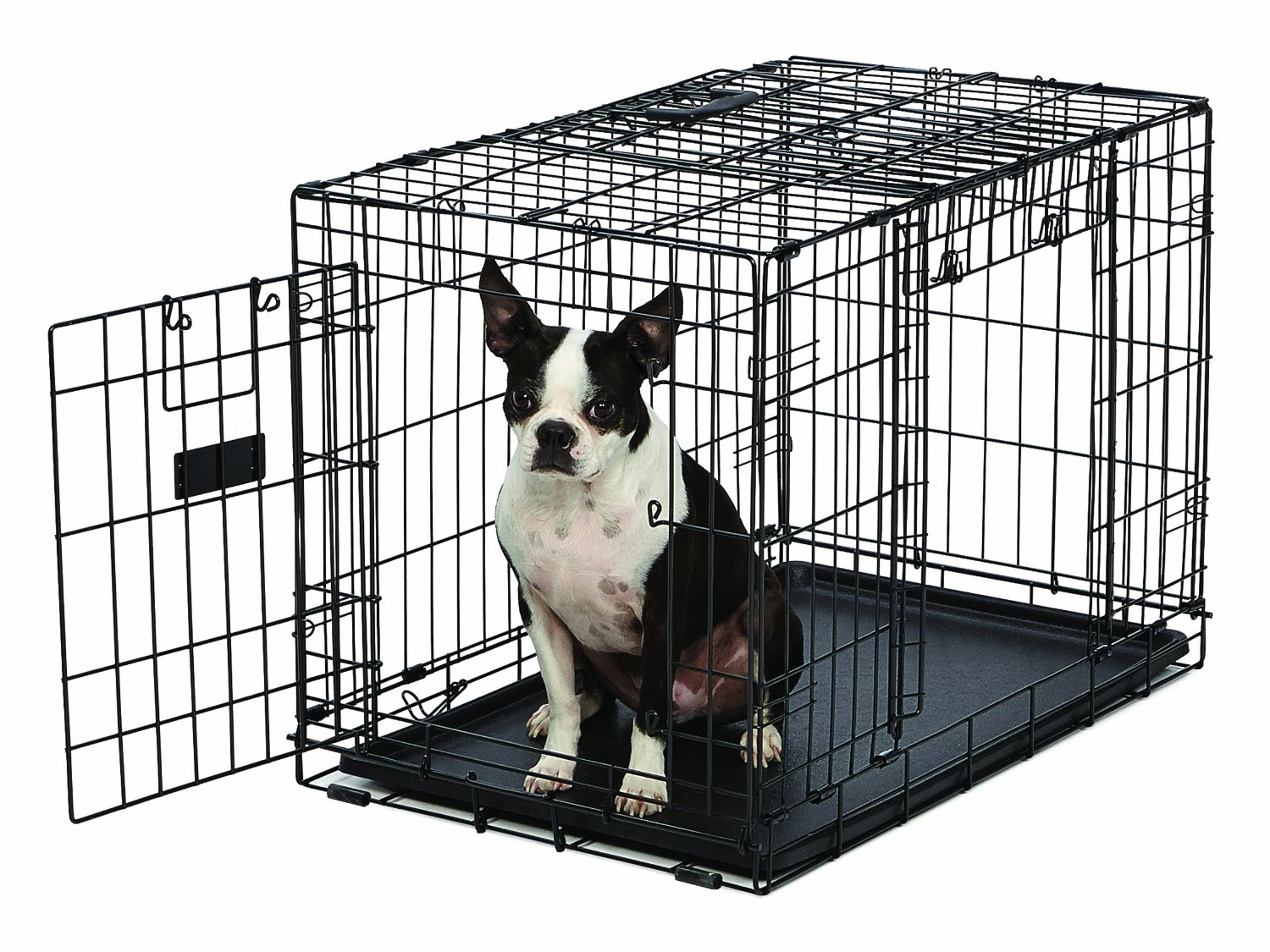 Amazon Crate | Top Paw Dog Crate | Midwest Dog Crates