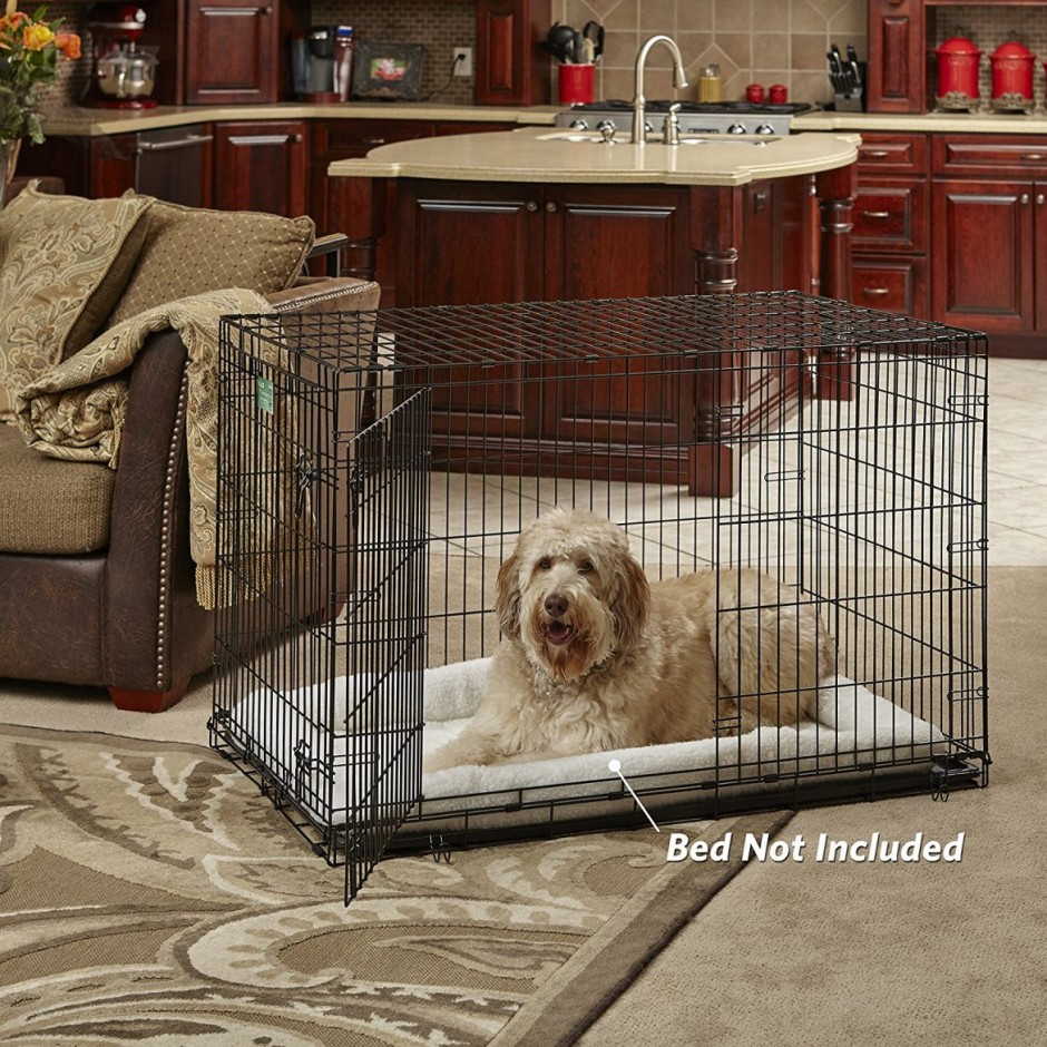 Amazon Dog Crates | Midwest 1154u Big Dog Crate | Midwest Dog Crates