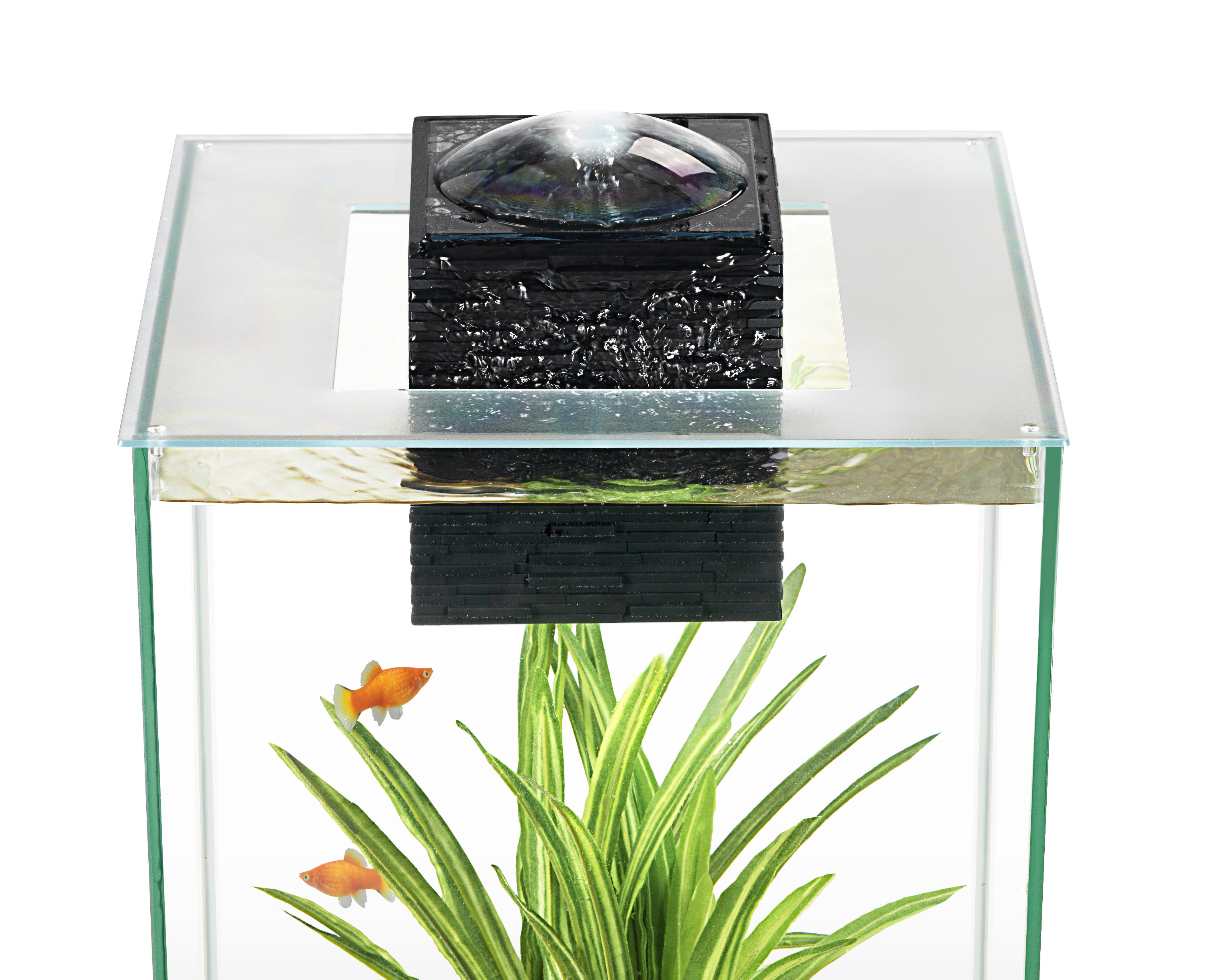 Amazon Fluval Edge | Fluval Chi Aquarium Cover | Fluval Chi