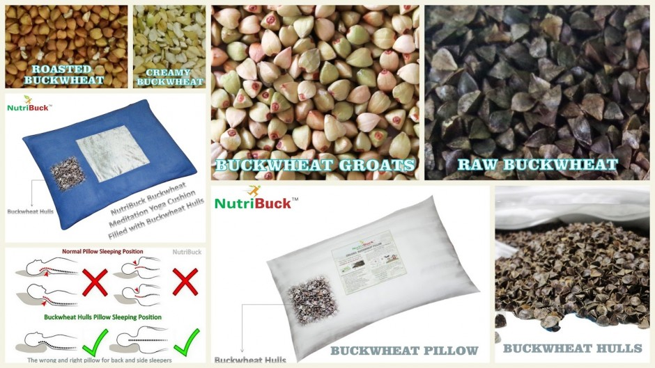 Buckwheat Pillow Case | Buckwheat Pillow Benefits | Buckwheat Pillow Singapore