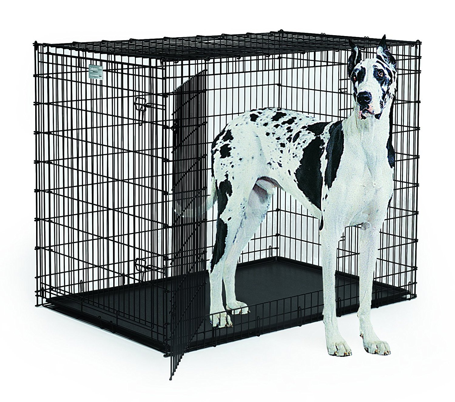 Dog Cage Divider | Midwest Dog Crates | Retriever Dog Crate
