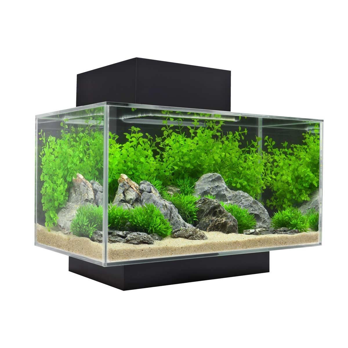 Fluval Chi Aquarium 6.6 Gallons | Fluval Chi | Fluval Chi 6.6 Gallon