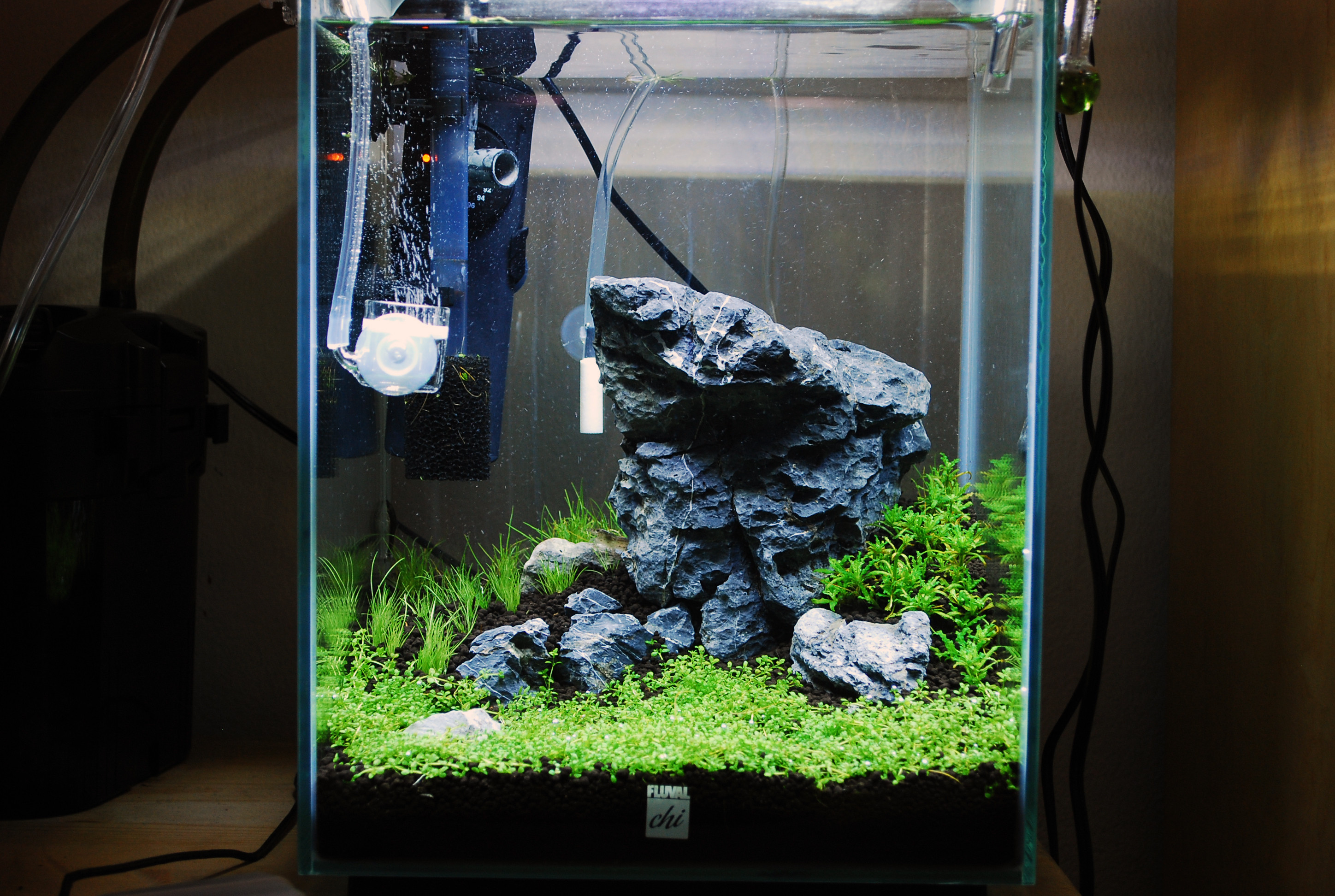 Hagen Fluval | Fluval Chi | Fluval Chi Replacement Light