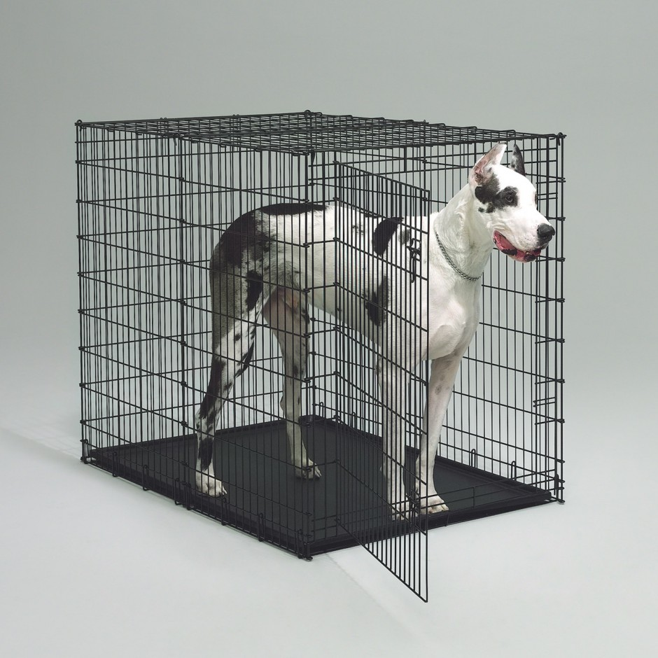 Life Stages Crate | Metal Dog Kennels | Midwest Dog Crates