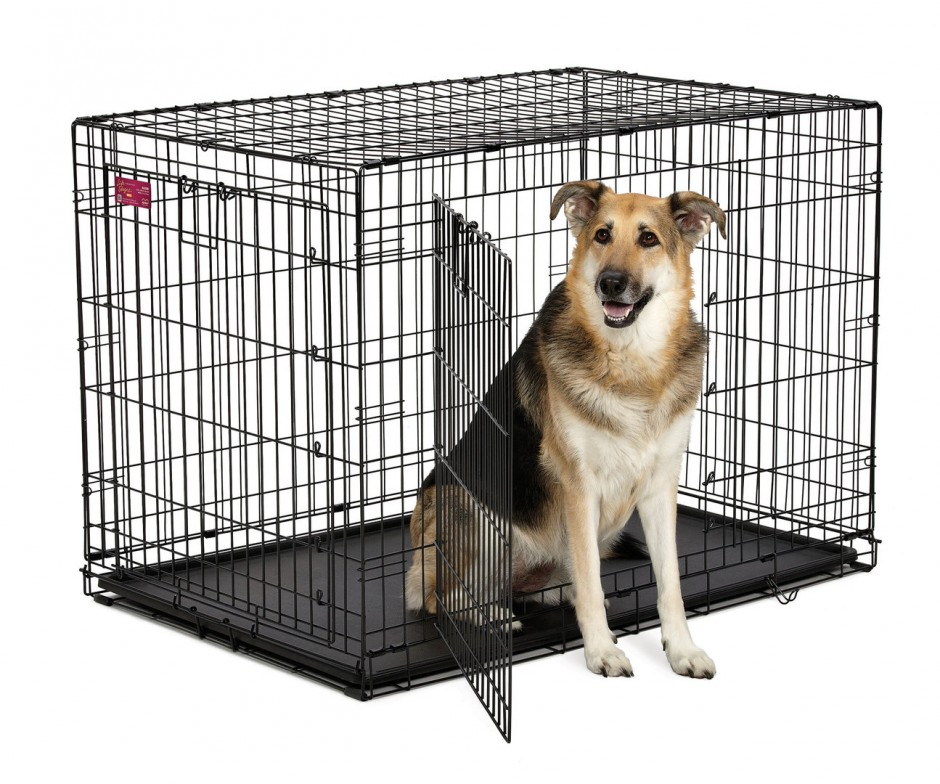 Midwest Crates For Dogs | Midwest Dog Crates | Midwest Solution Series Ginormus Double Door Dog Crate