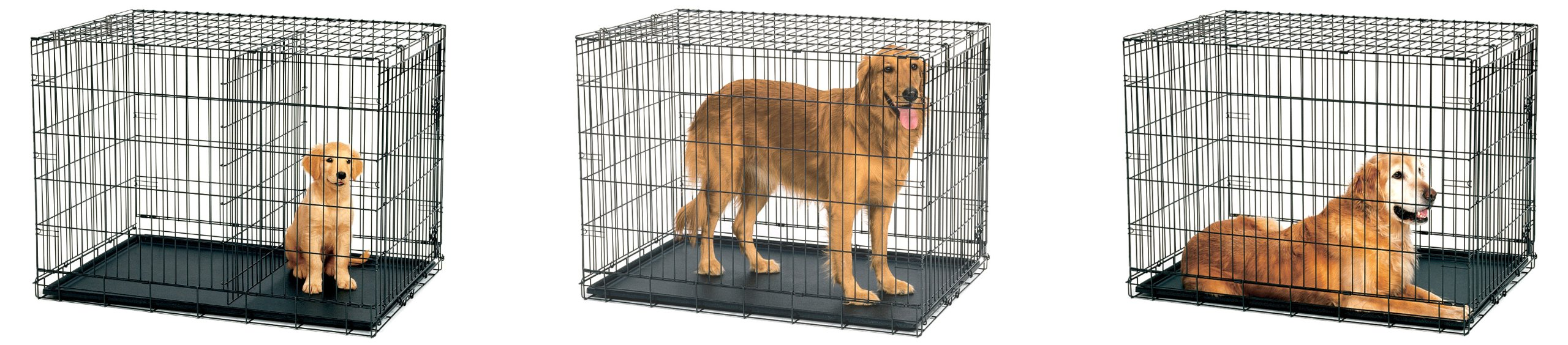 Midwest Dog Crates | 42 Inch Dog Crate | Pet Cage Walmart