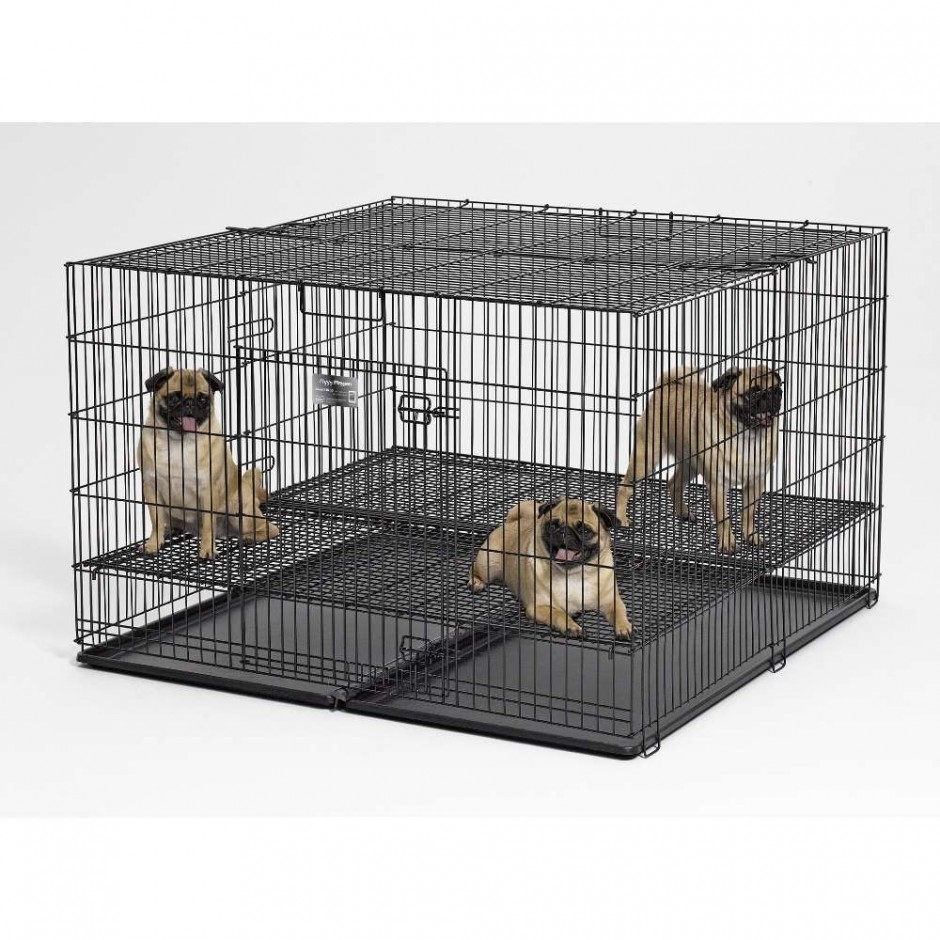 Midwest Dog Crates | Midwest Home For Pets | Midwest Life Stages Double Door Dog Crate