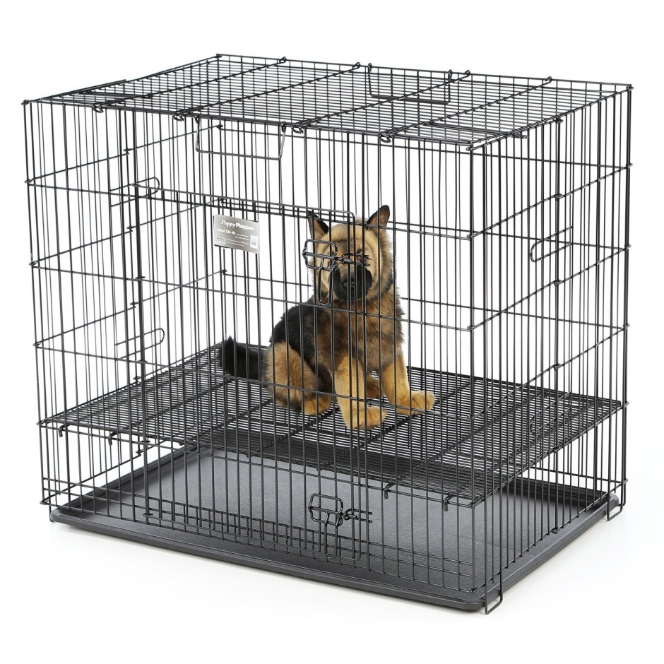 Midwest Dog Crates | Midwest Kennels | 48 X 36 Dog Crate