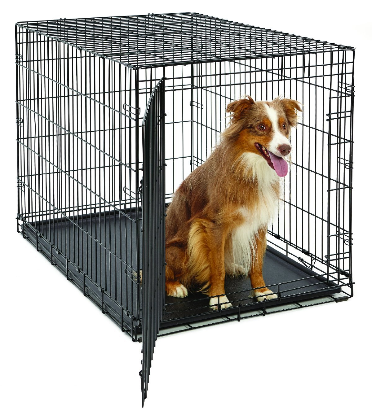 Midwest Folding Dog Crate | Retriever Dog Crate | Midwest Dog Crates