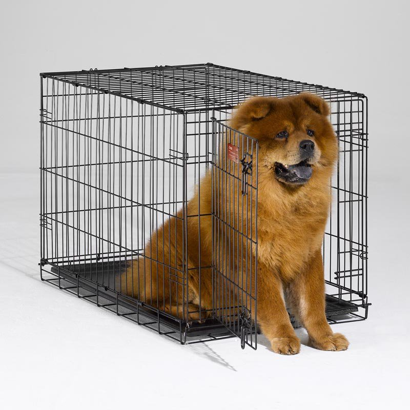 Midwest Icrate | Midwest Kennels | Midwest Dog Crates