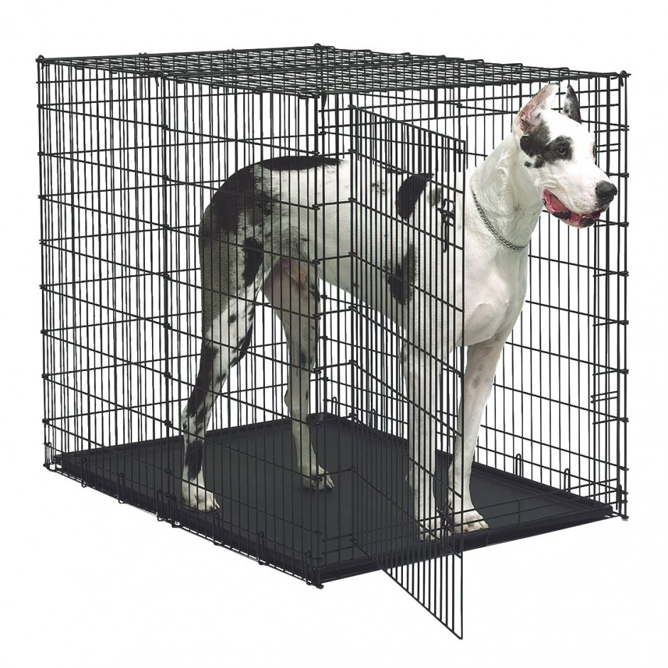 Midwest Life Stages Double Door Folding Metal Dog Crate | Midwest Dog Crates | Medium Dog Crate