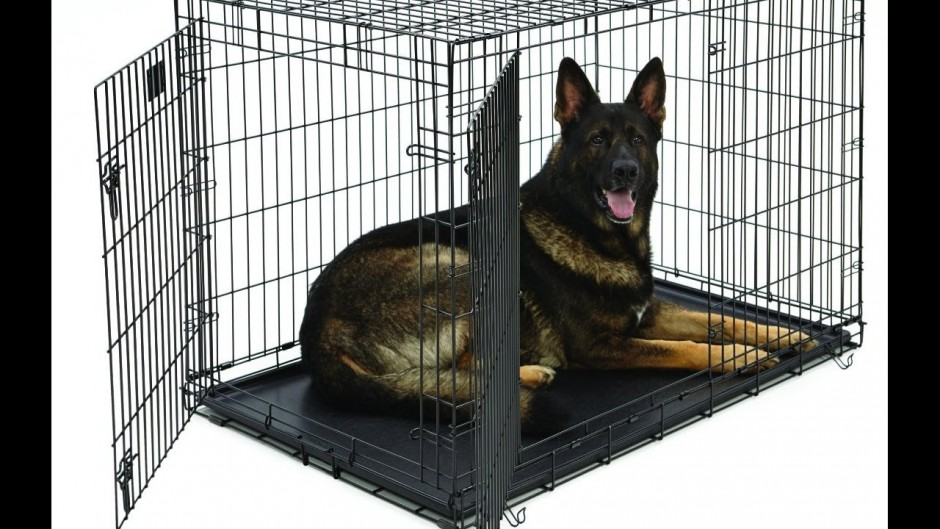 Midwest Metal Products | Midwest Dog Crates | Midwest Folding Dog Crate