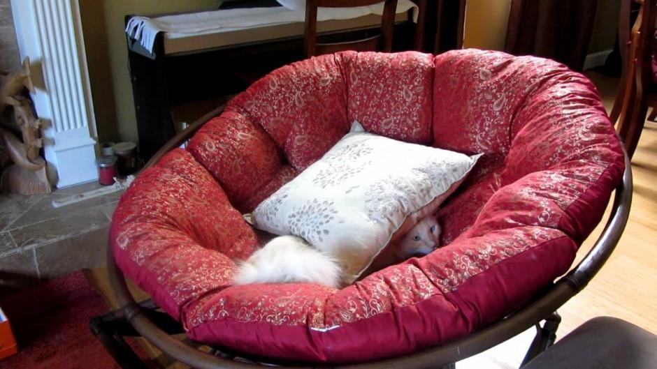 Papasan Cushion | Papasan Stool Cushion | Pier One Papasan Chair Cushion