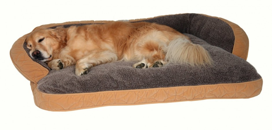 Chew Proof Dog Bed | Best Chew Proof Dog Bed | Most Durable Dog Toys