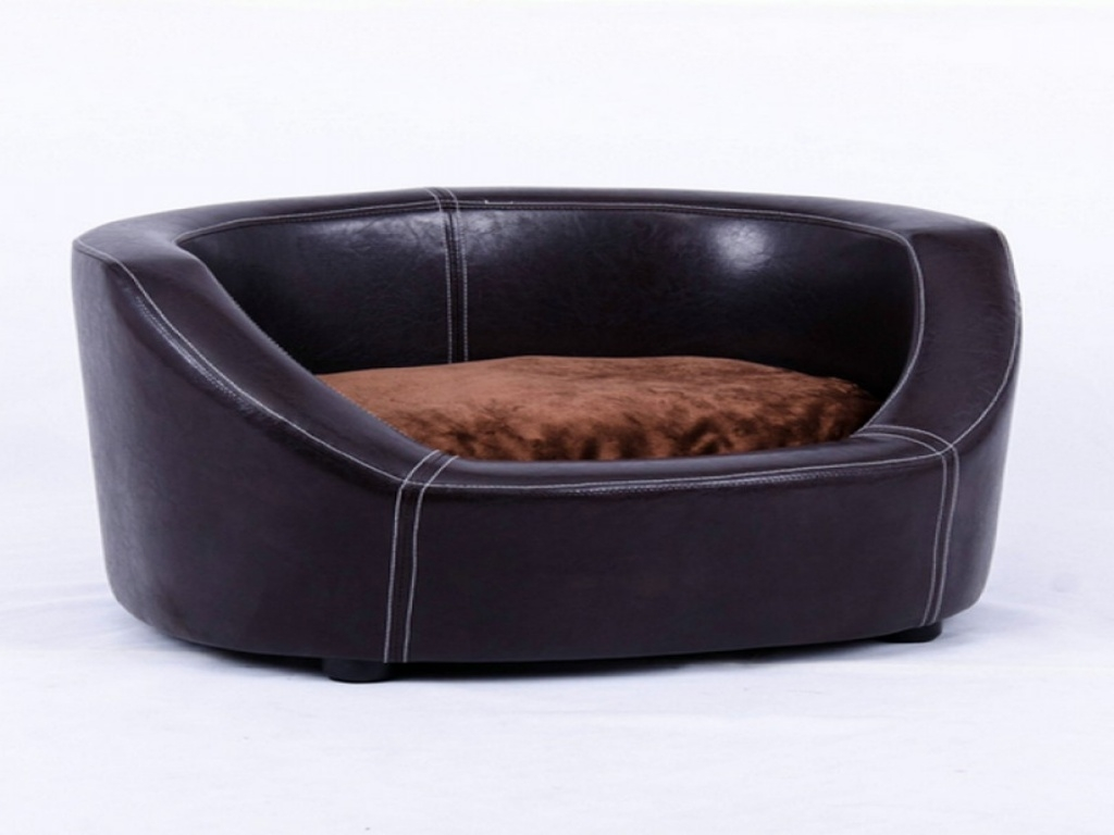 tips: comfy chew proof dog bed for comfortable pet bed ideas