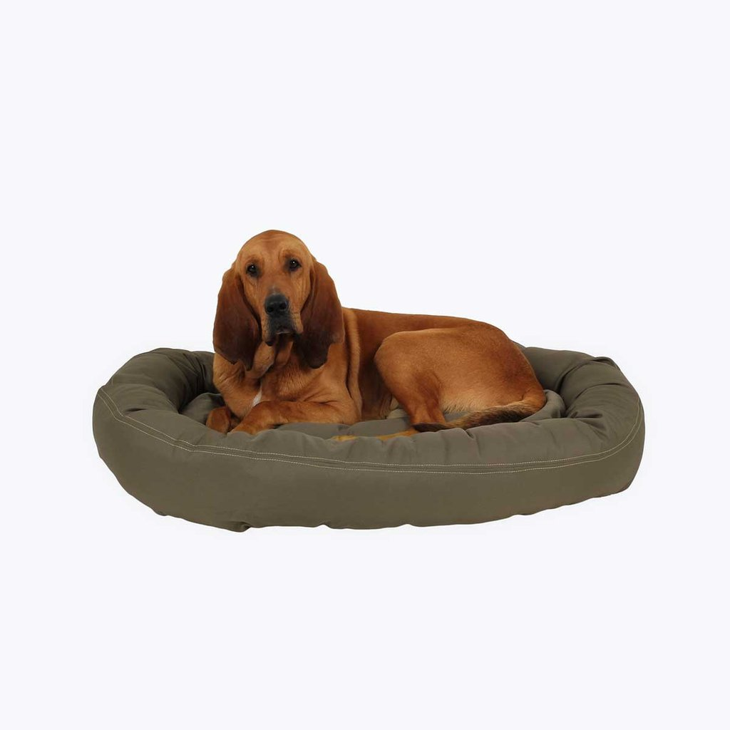 Chew Proof Dog Bed | Dog Bed Cot | Indestructible Dog Crate