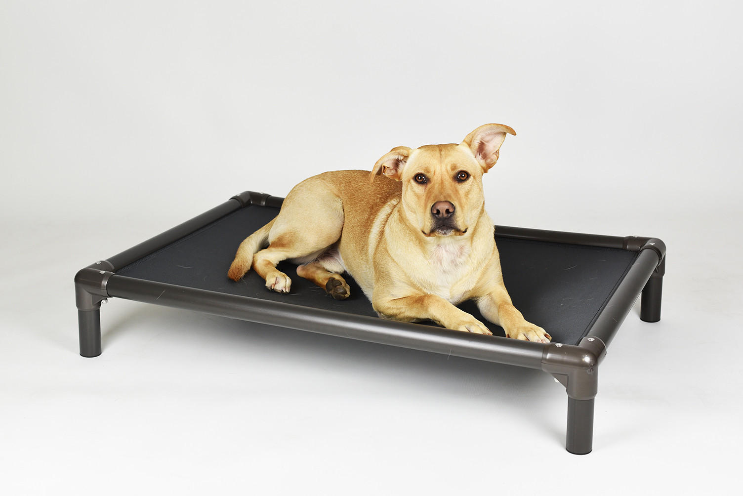 Chew Proof Dog Bed | Elevated Dog Beds | Tuff Bed
