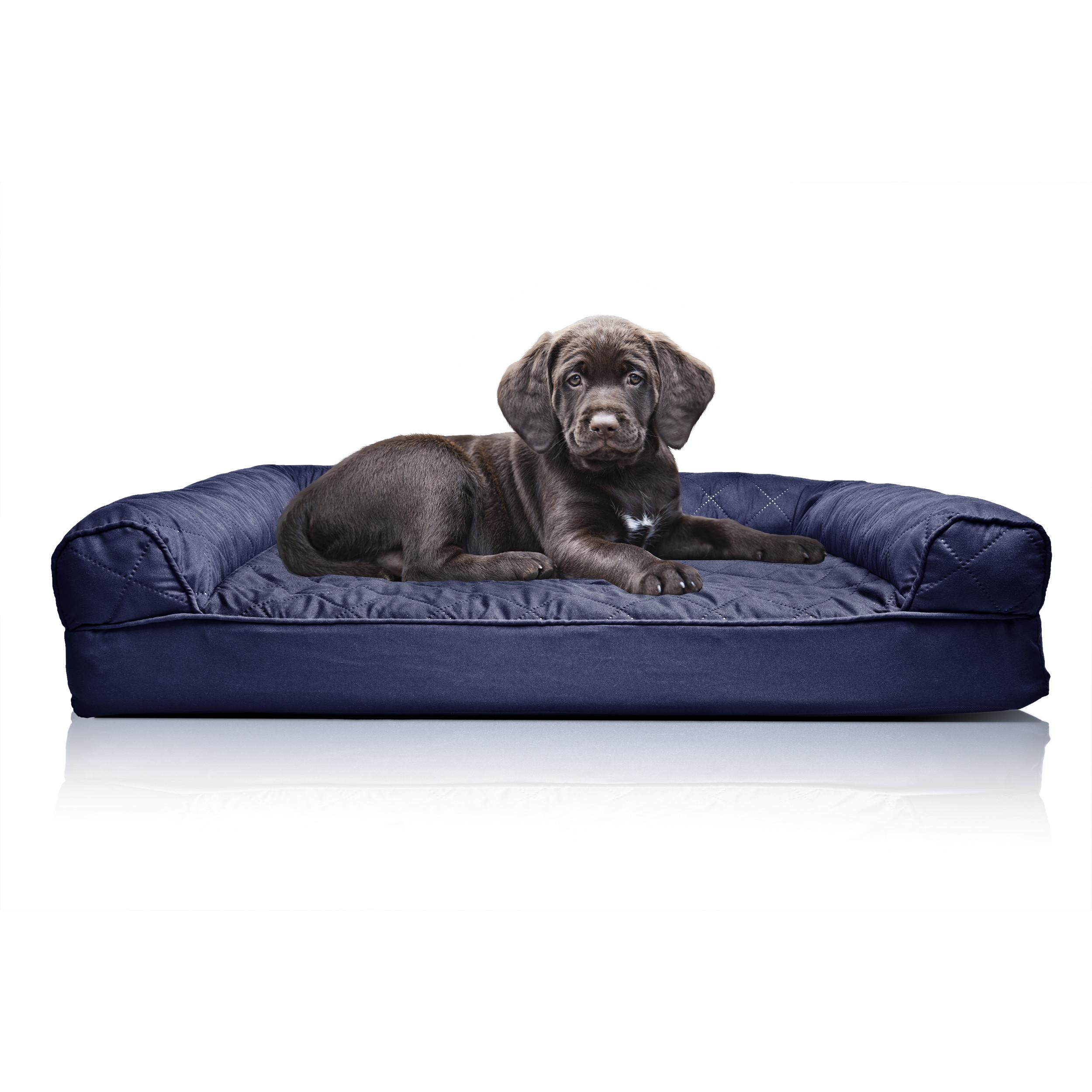 tips: chew proof dog bed | k9 ballistics dog bed | durable dog collars