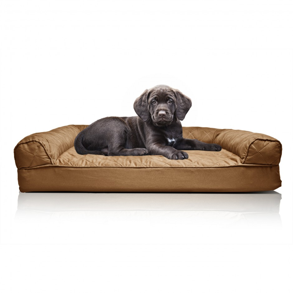 Chew Proof Dog Bed | Tough Dogs | Most Durable Dog Toys