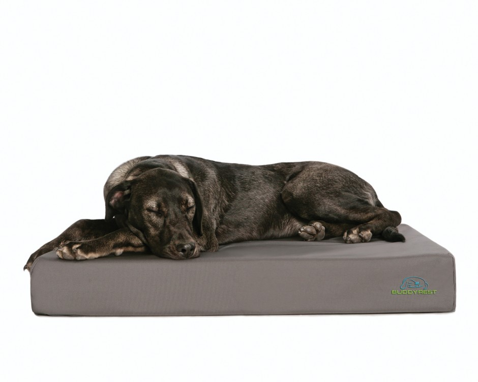 Dog Cots For Large Dogs | Tough Dog Toys | Chew Proof Dog Bed