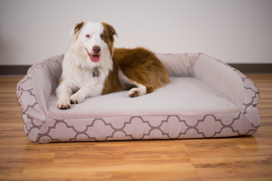 Dr Fosters Dog Beds | Tuff Bed | Chew Proof Dog Bed