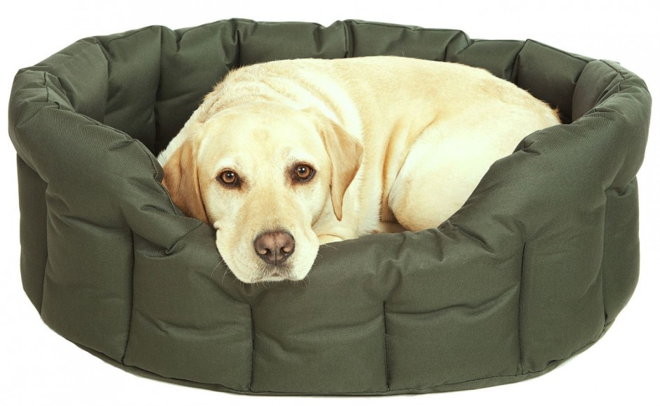 Durable Dog Collars | Tuff Crate Pad | Chew Proof Dog Bed
