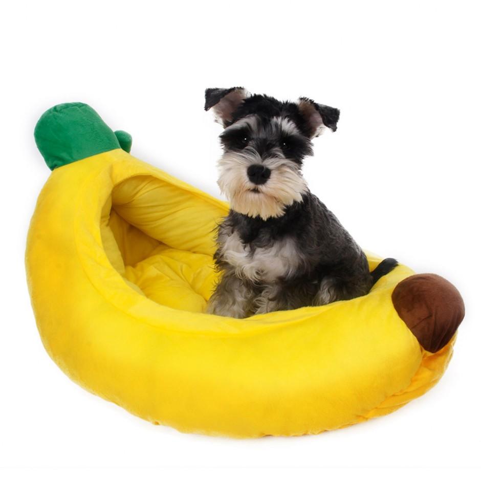 Durable Dog Toys | Chew Proof Dog Bed | Pitbull Dog Toys