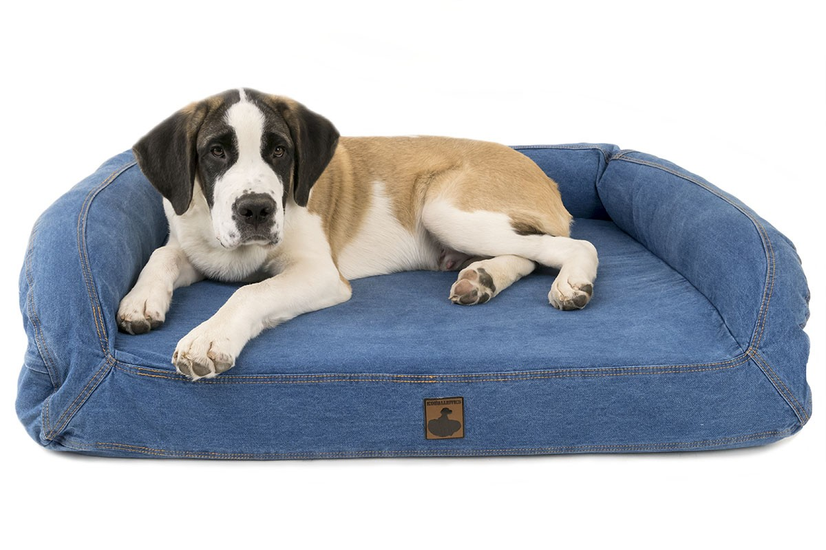 indestructible beds pet chew dog in toughstructable reviews best ultimate proof slumber bed top