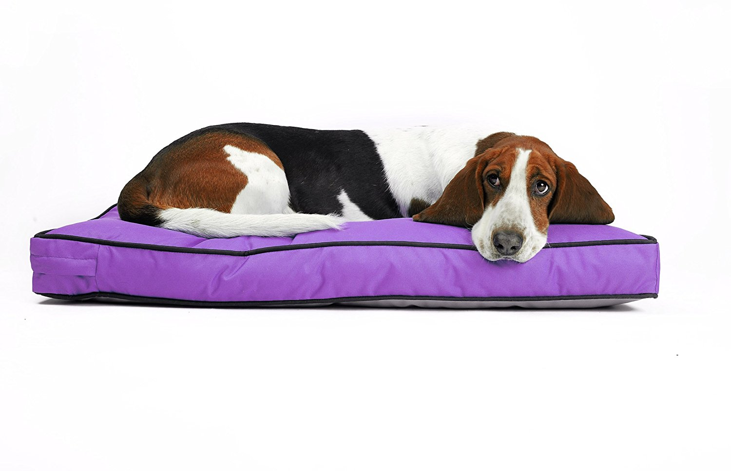 Pitbull Dog Toys | Hypoallergenic Dog Beds | Chew Proof Dog Bed