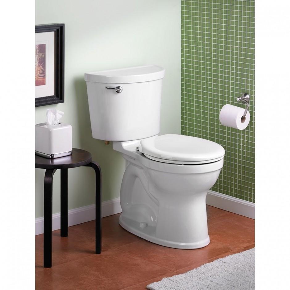 Saniflo | Upflow Toilet | Saniflo Toilet Cleaner