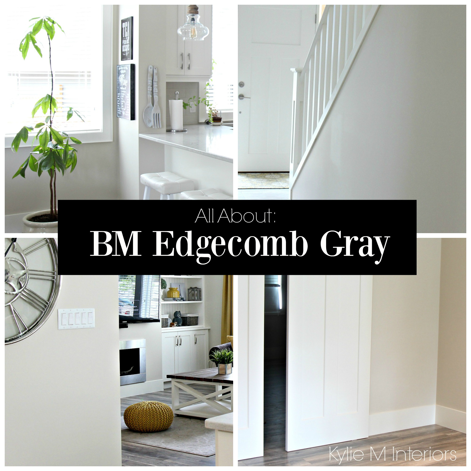 Sherwin Williams Anew Gray | Greige Paint | Revere Pewter Undertones