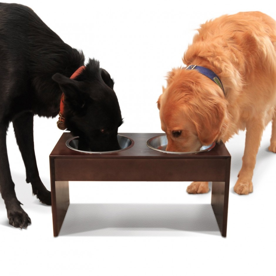 Collapsible Dog Bowl | Raised Dog Food Bowls | Elevated Dog Bowls