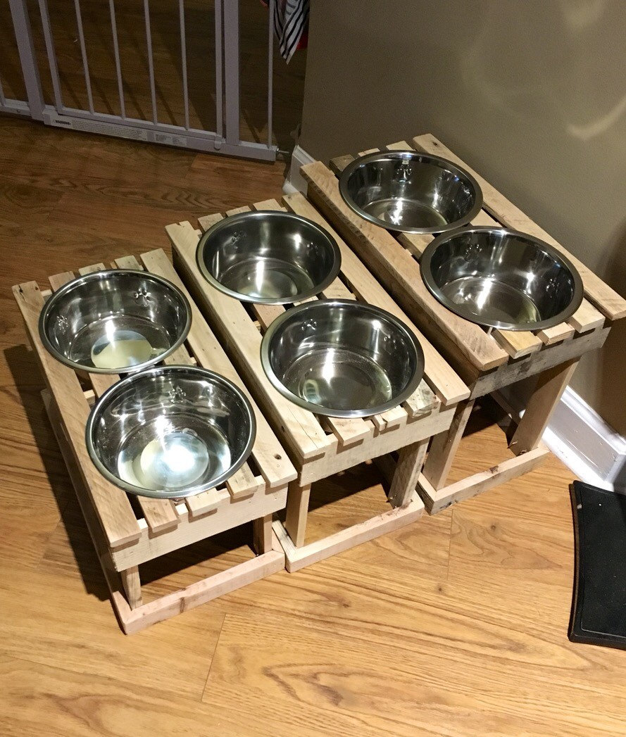 cat pin wood in stand rlley with bowl elevated feeder solid set tried it