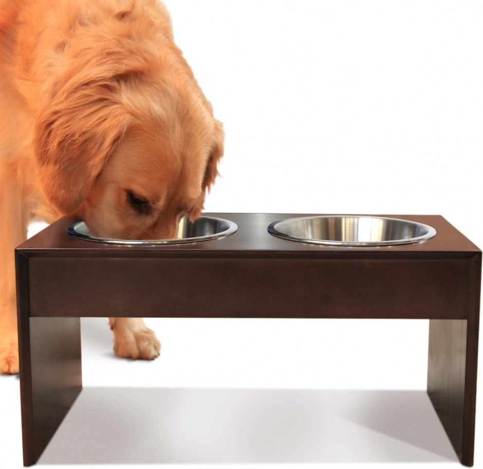 Food Dispenser For Dogs | Elevated Dog Bowls | Raised Dog Feeders