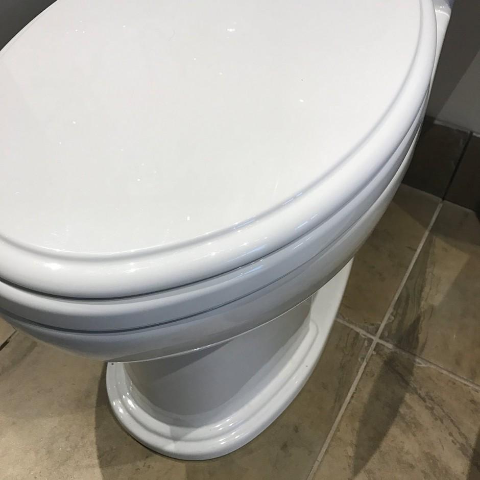 Toto Toilet | Toto Washlet | Toto Aquia Wall Hung Toilet Review
