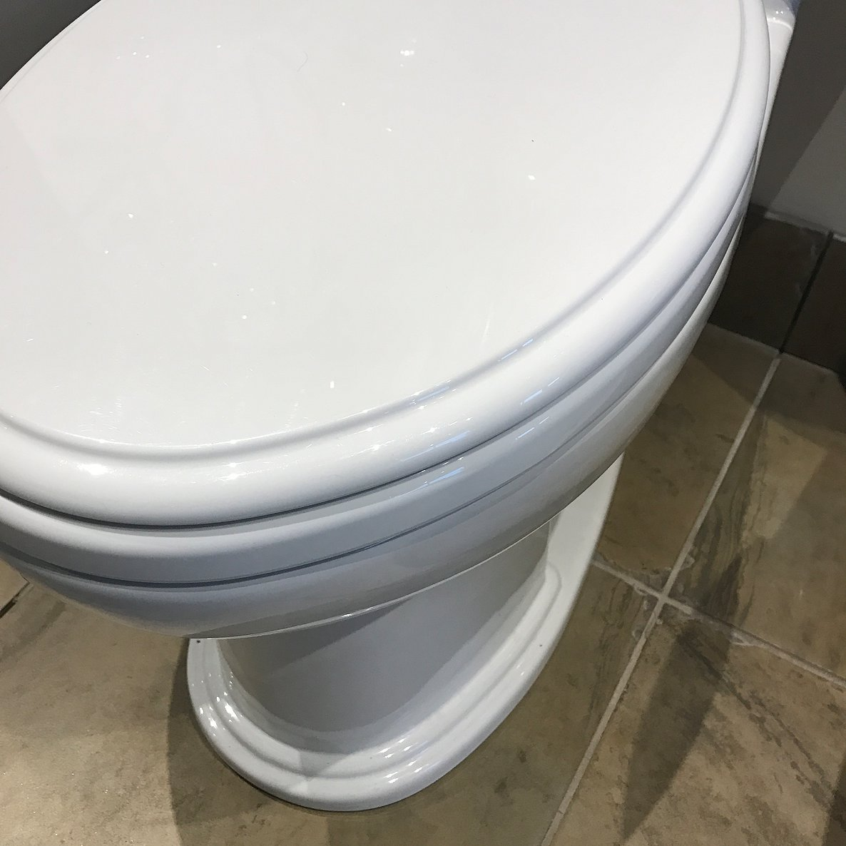 Have A Moder Toilet with Toto Toilet: Toto Toilet | Toto Washlet | Toto Aquia Wall Hung Toilet Review